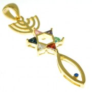 14K Gold Plated Messianic Grafted In Pendant, pgp428