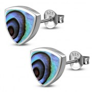 Abalone Reuleaux Triangle Silver Earrings, e390st
